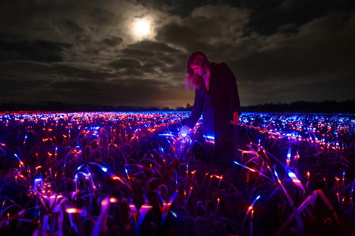 Met nieuw project GROW maakt Daan Roosegaarde een lichtsculptuur van boerenakker
